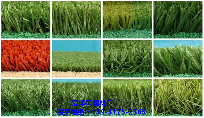 装饰草仿真草坪 屋顶装饰人工草坪 优质人造隔热草坪-- 盐山昌冠体育器材厂