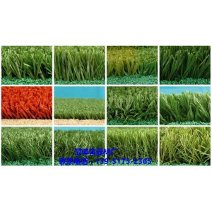 装饰草仿真草坪 屋顶装饰人工草坪 优