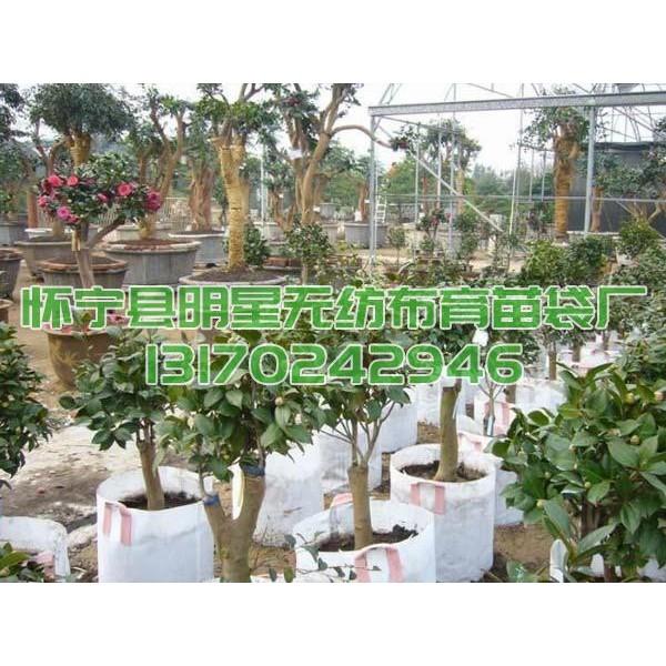 加厚插边形15cm以上囗径无纺布育苗袋植树袋可定制厂价供应