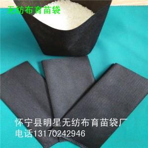 黑色无纺布插边形口径12cm育苗营养袋