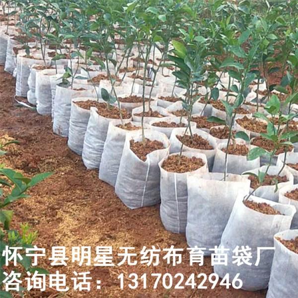 工厂直销可定制口径14高17无纺布育苗袋