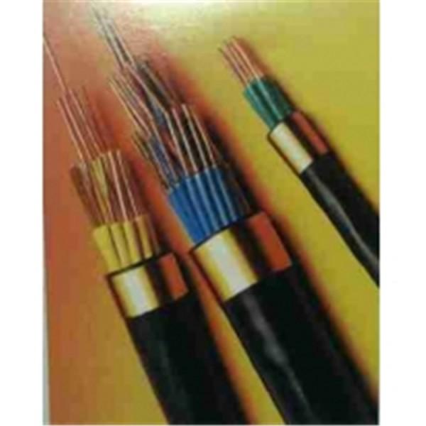 耐高温电缆阻燃控制电缆-- 通信电缆厂家