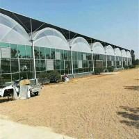 薄膜拱形连栋温室大棚