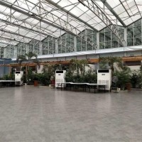 花卉种植温室大棚