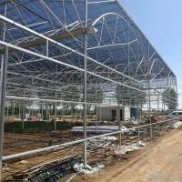 钢结构温室大棚